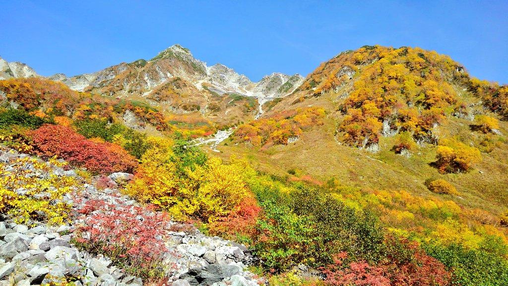 涸沢:紅葉の見頃を迎えています